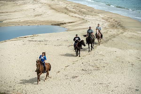 home-horse-riding